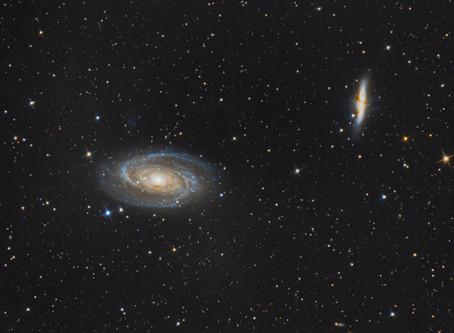 M81 & M82 - BODE'S GALAXY & THE CIGAR GALAXY