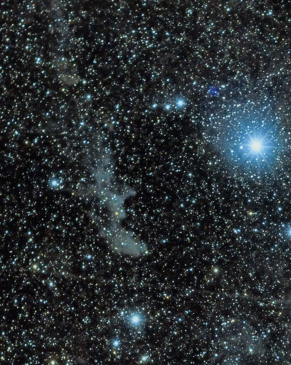 The Witch Head Nebula widefield DSLR astrophotography using a Canon t3i and a EF 50mm lens at f/1.8