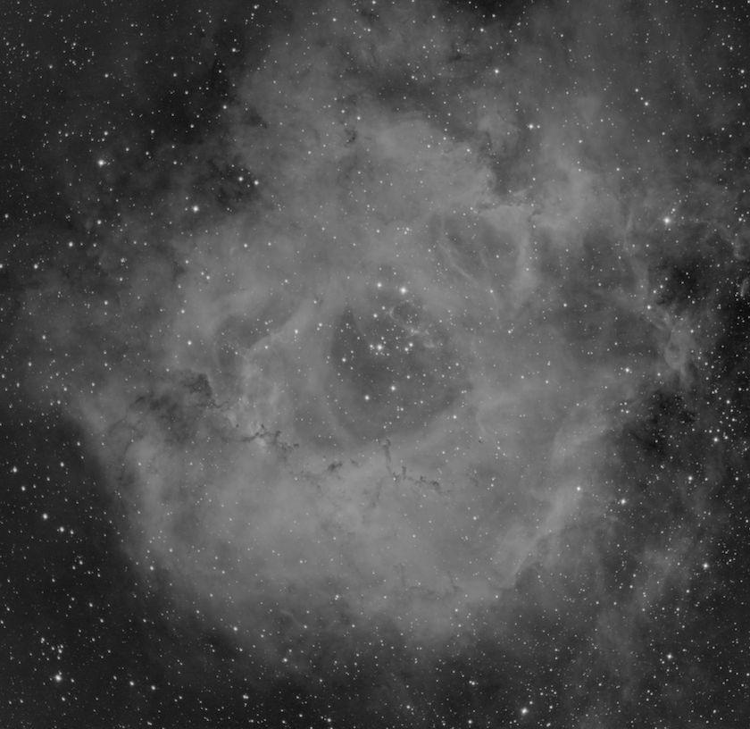 Rosette Nebula Hydrogen Alpha
