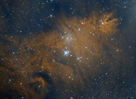 NGC 2264 - The Cone Nebula and Christmas Tree Cluster