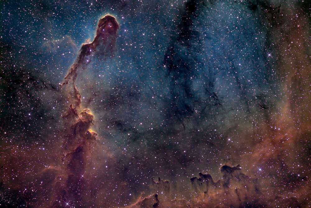 The Elephant's Trunk Nebula Astrophotography