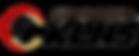 2015 PKLNS NEW LOGO (한글_투명배경).png