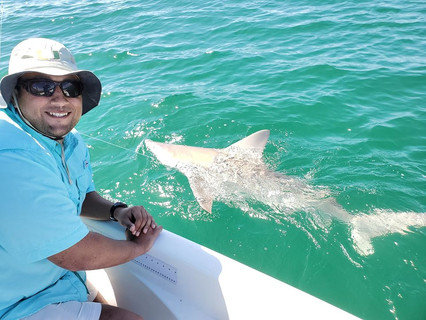 Shark Fishing Charters Fort Myers Beach
