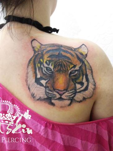 royal skin tiger.jpg