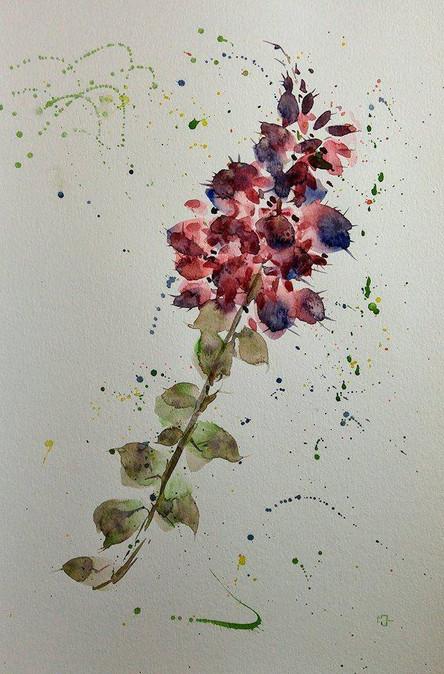 Burst! Floral Berries