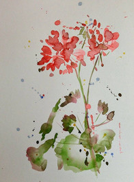 Playful Geraniums