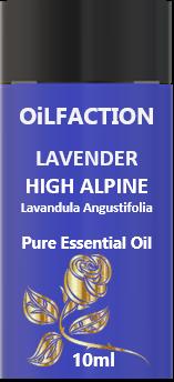 Lavender High Alpine Pure Essential Oil