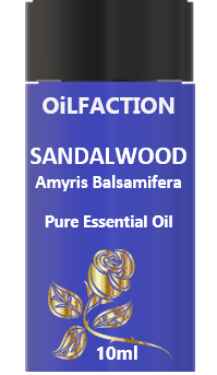 Sandalwood Amyris Pure Essential Oil