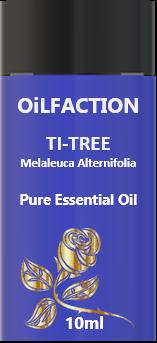 TI-TREE ( Tea Tree)