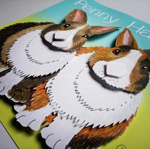 rabbit pet portrait