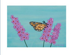 2016 09 08 Butterfly Snipped.JPG