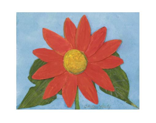 Mexican SunFlower.JPG