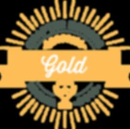 NSSLHA_CH_Gold_2018.png