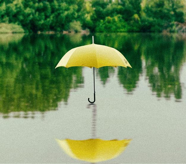 Umbrella Insurance. Alpharetta, Georgia