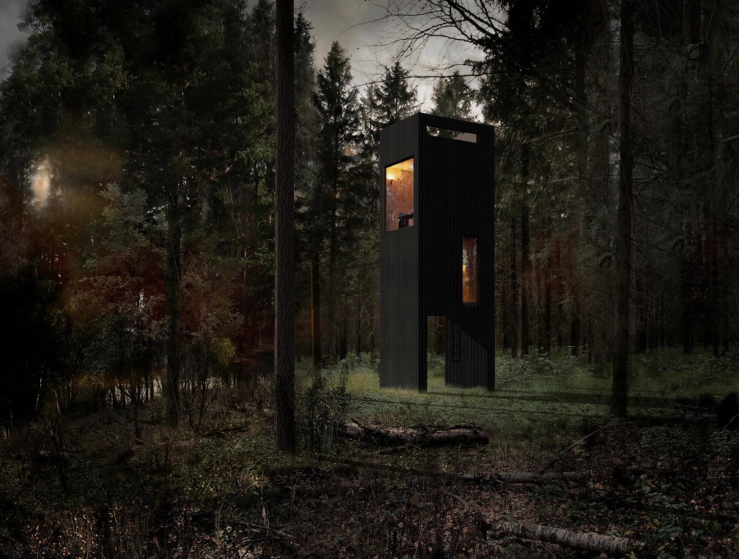 hermits_tower_house_sozonych.jpg