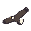 Wink-class-levels-logos-eagle.png