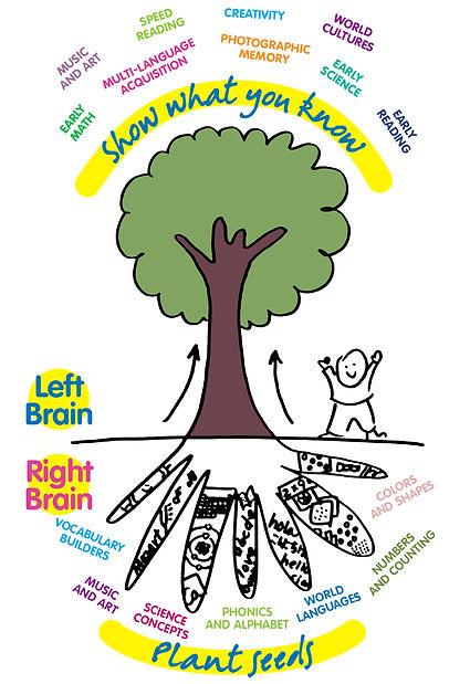5b3c49667f7e7d0f3395fc86_teach-right-to-