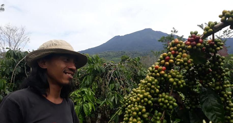 Salah Satu Petani dan Prosessor Kopi Pagaralam
