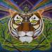 Third Eye of the Tiger
