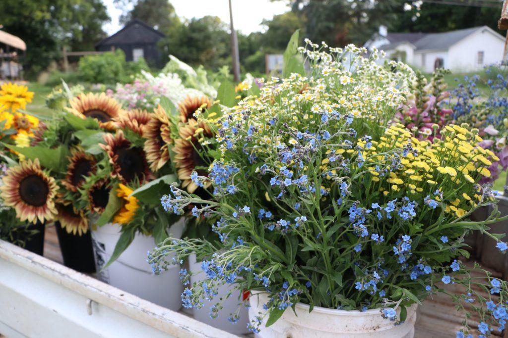 bulk flowers.jpg