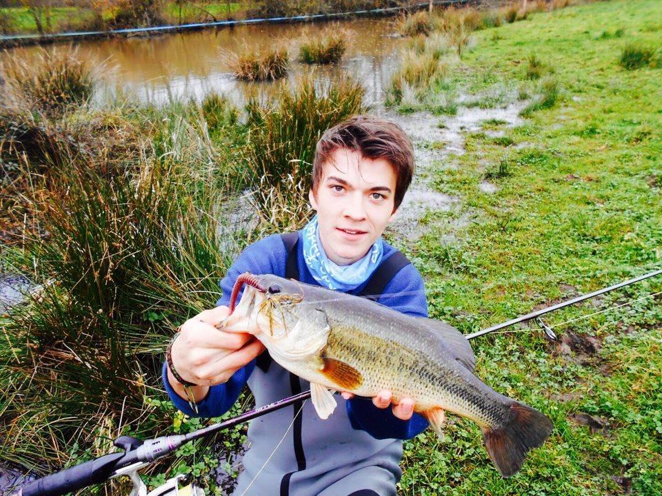 bass-42-Hippolyte
