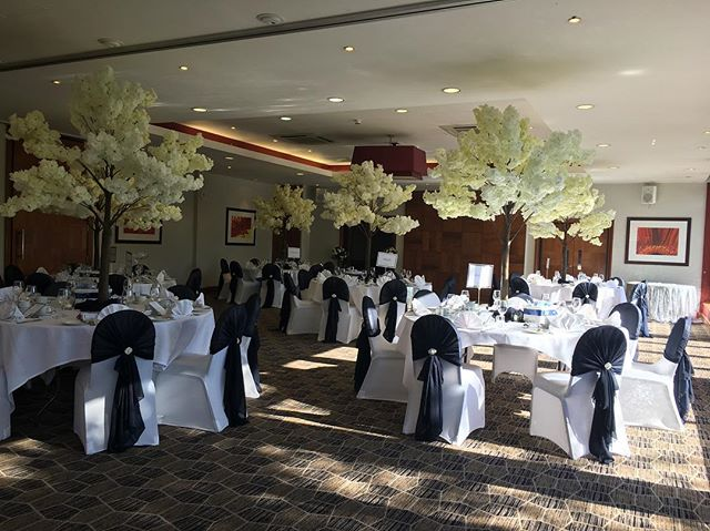 Venue decor our blossom trees and chair