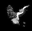 Logo Biodanza - Sistema Rolando Toro