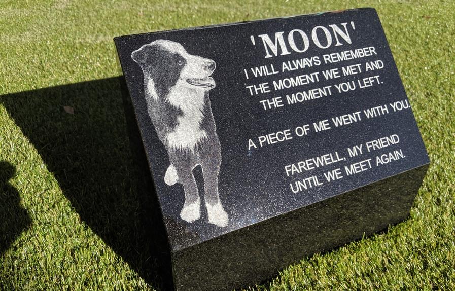 dog wedge memorial.jpg