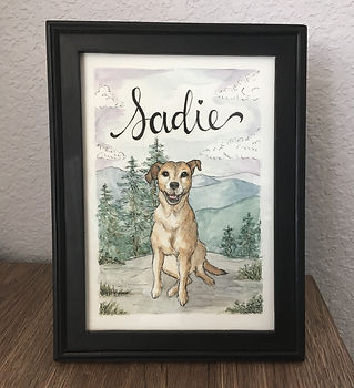 Pet portrait of Sadie dog with White Mountains