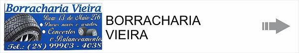 BORRACHAROA VIEIRA.jpg