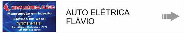 AUTO ELETRICA FLAVIO.jpg