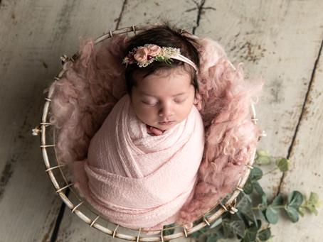 Baby Ivy- Rose