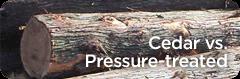 cedar-versus-pressure-treated.png