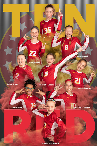 2019 I AM Volleyball Poster