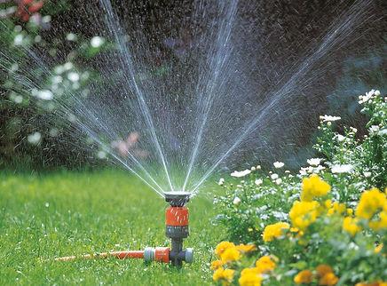 Lawn Maintenance.jpg