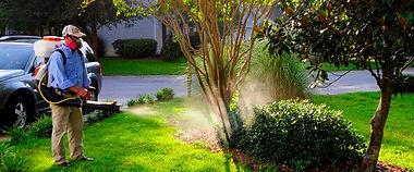 MosquitoSprayHR1.jpg