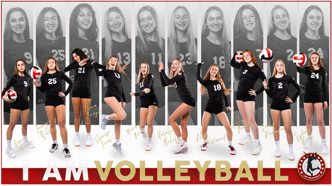 I AM Team Poster - 16 Red