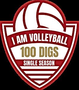 Achievement - 100 Digs.png