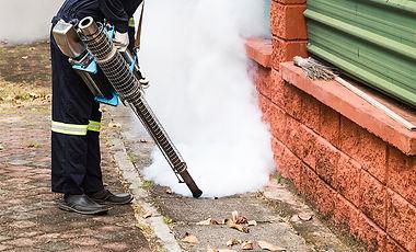 Fogging Mosquitos.JPG