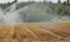 Crop Spray.jpg