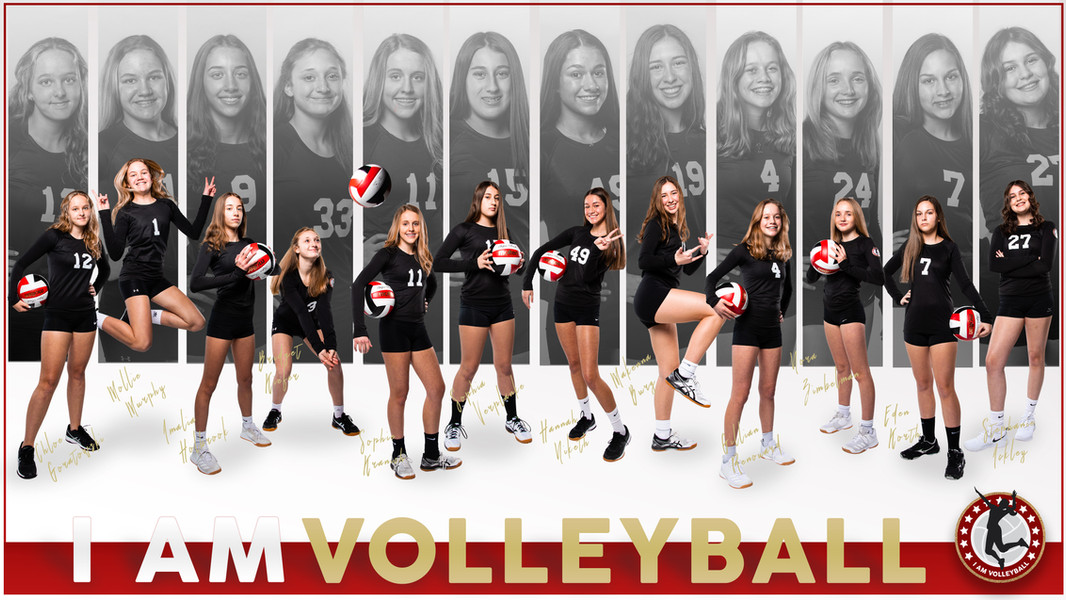 I AM Team Poster - 14 Red