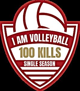 Achievement - 100 Kills.png