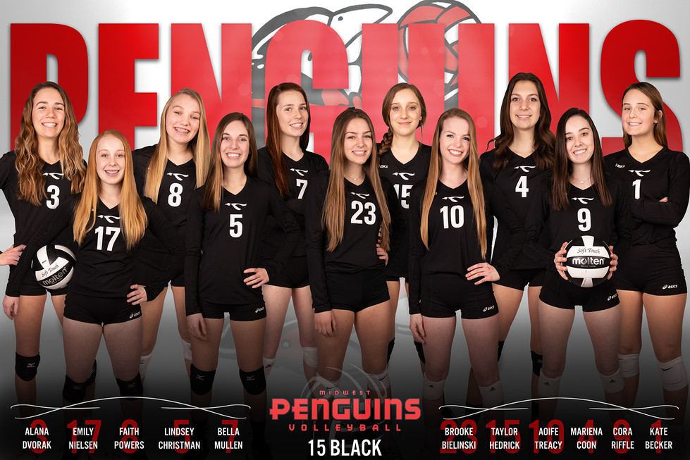 2019 Midwest Penguins Team Poster
