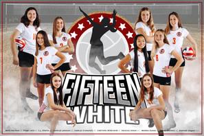 Team Poster - 15 White
