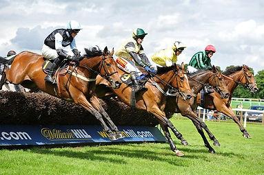 Worcester Races.jpg