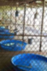 DSC_0180_edited.jpg