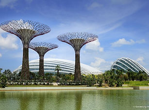 Gardens by the Bay   Singapore   STEM   Asia   School & Group Travel