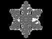 snowflake%20logo_edited.png