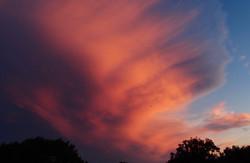 HighlandOaksBoyd_sunset