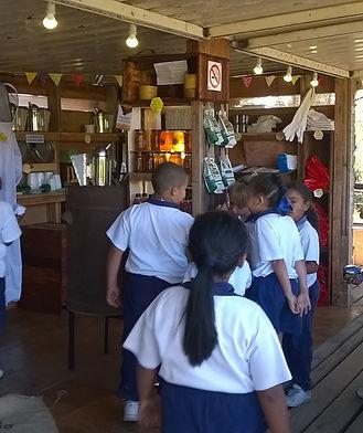Apiarista School visit